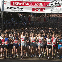 The start of the Eremitagerun, Dyrehaven, Denmark.