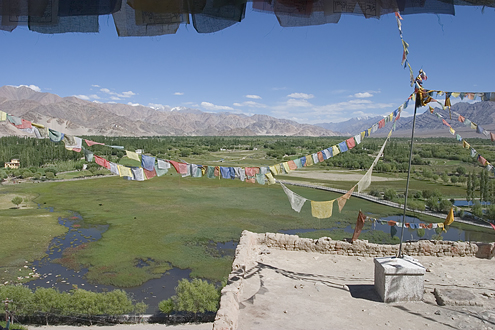 View from Shey Gomba, a monestery in Leh, India